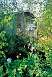 Coastal gardens uk garden design for dorset and devon for Garden design devon